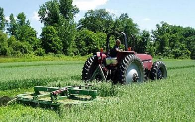 Accidentele de munca in ferma te pot duce la pierderea subventiilor