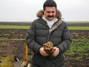 Condamnare de patru ani cu închisoare pentru Nicolae Ioțcu