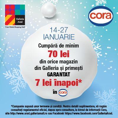 Galleria Arad începe anul cu super promoții!