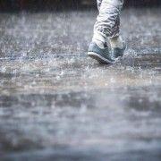 Cod galben de ploi si vant, in judetul Arad
