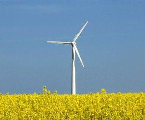 CNP: RESURSELE ENERGETICE ALE ROMANIEI VOR CRESTE CU 1,6% ANUL VIITOR, LA 43,3 MILIOANE TEP