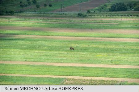 AGROMETEO: STAREA DE VEGETATIE A CULTURILOR DE TOAMNA VA EVALUA NORMAL IN MAJORITATEA REGIUNILOR AGRICOLE