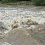 Drum judeţean închis după revărsarea Crişului Alb, care a inundat 200 de hectare de teren
