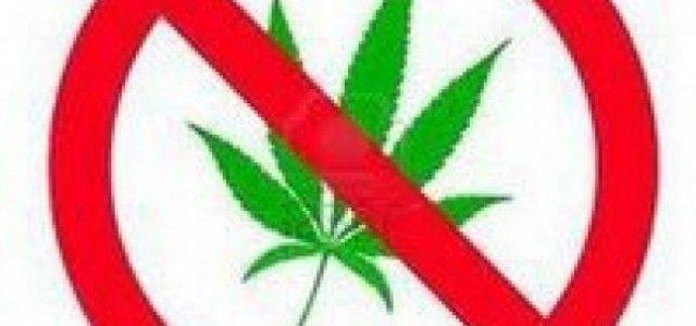 ZIUA INTERNAȚIONALĂ ÎMPOTRIVA CONSUMULUI ȘI TRAFICULUI ILICIT DE DROGURI – 26 IUNIE 2020