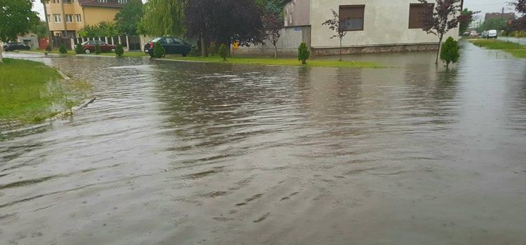 Ploaia face ravagii in judetul Arad