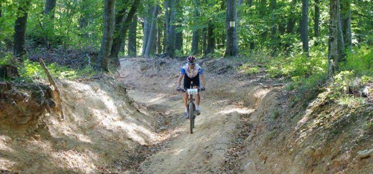 """Peste 400 de bicicliști vor participa la """"Arad Bike Race"""""""