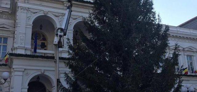 Primăria Arad va aprinde bradul de Crăciun