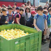 """Claudia Boghicevici: """"Orientăm copiii spre natură şi respectarea mediului"""""""