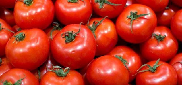 Prelungirea termenului privind sprijinul financiar pentru producătorii de tomate