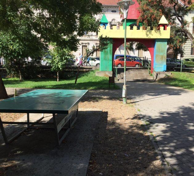 USR Arad cere amendarea primarului pentru  dezastrul din parcurile arădene