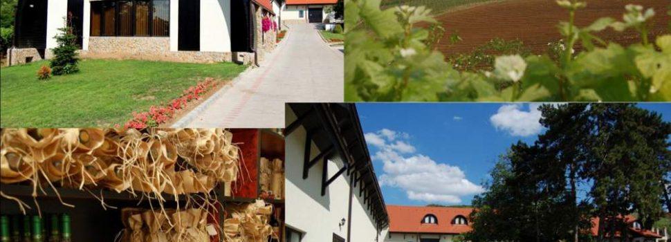 Circuitul Cramelor din Podgoria Aradului începe la sfârșitul acestei săptămâni!