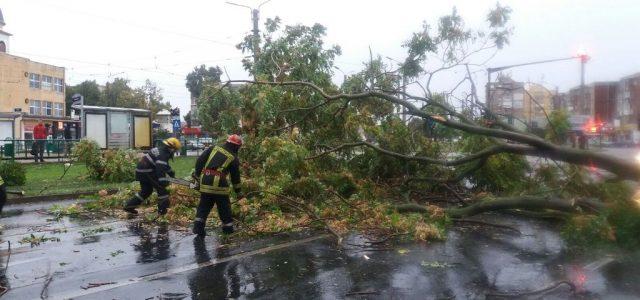 Guvernul a alocat Aradului mai mulți bani pentru pagubele furtunii decât Timișului