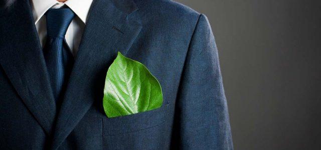 3 moduri avantajoase prin care iti poti transforma business-ul in unul eco-friendly in 2019