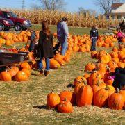 Halloween în familie: activități și distracții pentru tine și cei dragi!