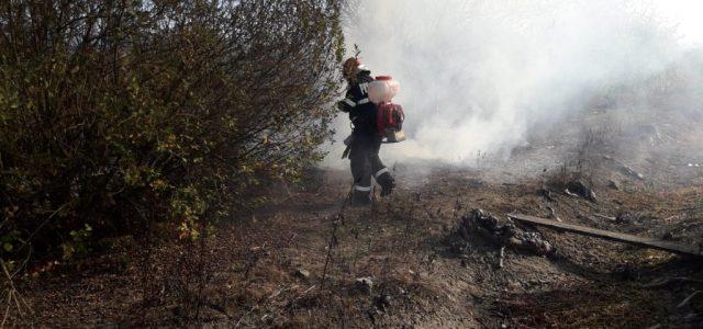 Peste 50 de incendii de vegetație uscată, stinse de pompierii arădeni în ultimele două luni