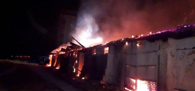 Incendiu puternic în Sântana. Un depozit cu 2000 de tone de cereale s-a făcut scrum