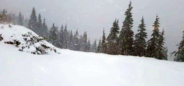 Ninsori și temperaturi sub zero grade în mai multe zone din țară