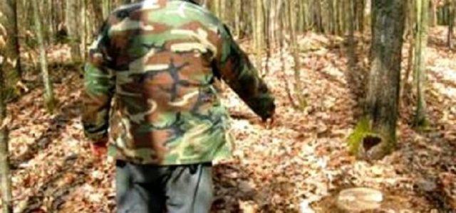 Pădurarii vor putea fi dotați cu armament de serviciu letal