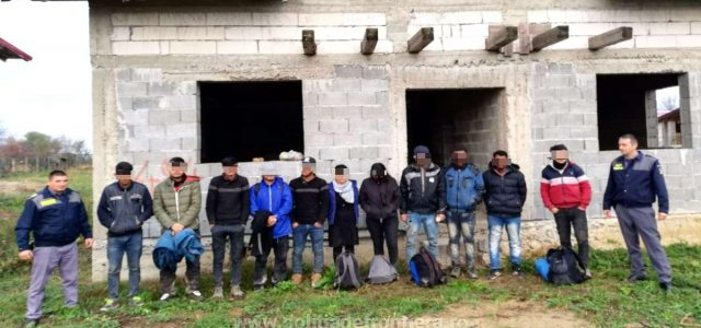 Douăzeci cetăţeni străini, depistaţi în apropierea frontierei cu Ungaria