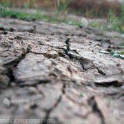 Cea mai gravă secetă din ultimul secol afectează Europa de Est
