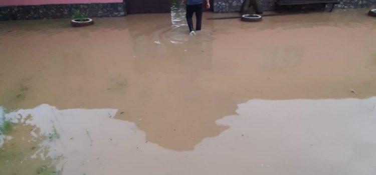 Fenomenele meteorologice de aseară au dus la afectarea a 12 localități din județul Arad