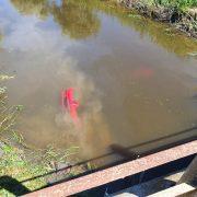 Mașină răsturnată în Canalul Morilor. ISU Arad intervine
