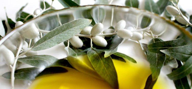 Uleiul de măsline învingător sub toate aspectele, confirmă cercetătorii de la Harvard