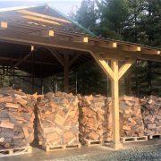 Romsilva organizează licitațiile pentru valorificarea lemnului doar în sistem online
