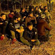 Douăzeci şi unu de cetăţeni străini, depistaţi pe jos la graniţa cu Ungaria