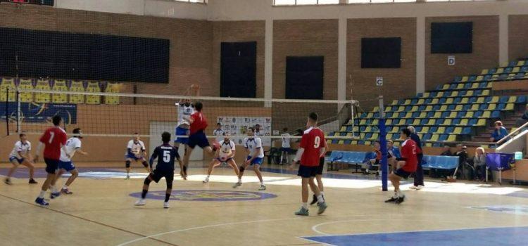 ProVolei are un nou adversar, în Cupa României. Lovas este sportivul anului 2020