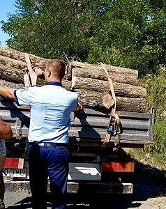 Verificările polițiștilor din Lipova s-au lăsat cu sancțiuni